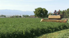 Alfalfa cutting towards corner close M HD Stock Footage