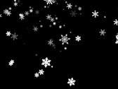 Snowflakes Fast Stock Footage