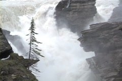 Athabasca Falls MCU spring Stock Footage