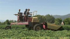 Lucern cutting farm tracking M HD Stock Footage