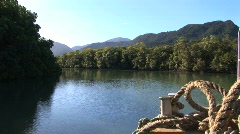 view from moving boat on Daintree River, Australia Stock Footage