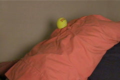 Slow Motion Ball Hits Pillow - stock footage