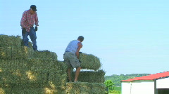Farmers Loading Hay - stock footage