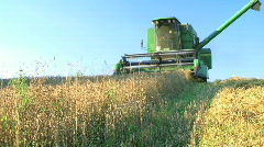 Combine Harvesting Wheat Stock Footage