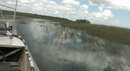 The Everglades in Florida Stock Footage