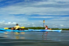 Two People Kayaking Away outdoor outdoors wild couple date vacation Stock Footage