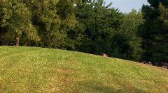 kids running hill - stock footage