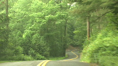 Winding Forest - stock footage