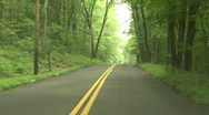 Hilly Forest Road Stock Footage