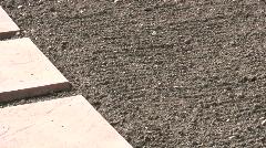 Farming seedling gardening watering in spring - stock footage