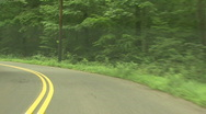 Forest Road In Suburbia Stock Footage