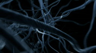 Stock Video Footage of neurons