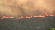 Wildfire04 Stock Footage
