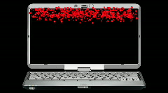 Laptop with falling roses Stock Footage