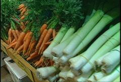 Food, leeks carrots beets Stock Footage