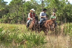 Stock Video Footage of Steady Shot of Trio Riding on Horseback