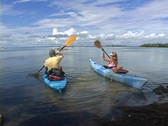 Launching Kayaks - Kayak Boat Watercraft  Stock Footage