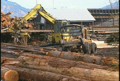 Lumber mill log tractor & picker Stock Footage