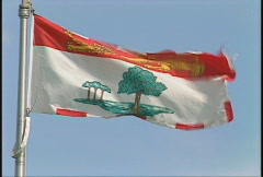 Flag, Prince edward Island flag Stock Footage