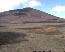 France - La Reunion - Piton de la Fournaise area - Formica Leo - Indian Ocean  Stock Footage