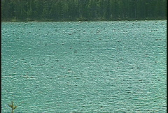 Bow Lake, water reflection, Banff Stock Footage