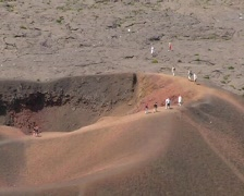 France - La Reunion - Indian Ocean - Formica Leo Stock Footage