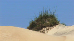 Carolina Sand Dune Stock Footage