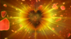 Valentine heart with rose petals Stock Footage