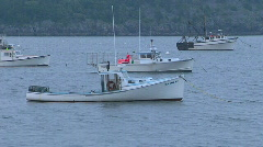 Lobster Boats Harbor Stock Footage
