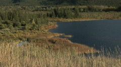 Banff Vermilion Lakes shoreline Stock Footage