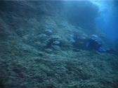 Underwater scene (D206) Stock Footage