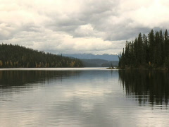 Purden Lake Prov Park  Cariboo BC - stock footage