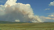 Stock Video Footage of Wyoming Forest Fire