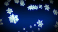 Stock Video Footage of Snowflakes Falling