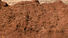 Long Row of Wood Chips, Deforestation, Tree Clearing - stock footage