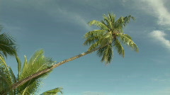 Stock Footage - Topical Island Stock Footage
