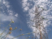 Power pylon over clouds Stock Footage