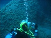 Diver Bubbles (D081) Stock Footage