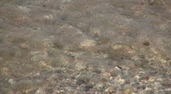 Small waves hitting a pebble beach in Sweden Stock Footage