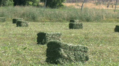 Hay field baler tractor pan M HD Stock Footage
