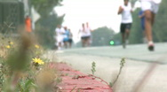 Stock Video Footage of Marathon Runners from the Curb