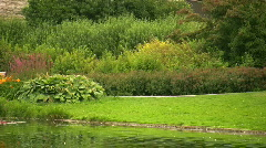 Small pond Stock Footage