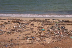 NTSC: Beach with pollution Stock Footage