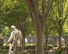 PAL: Korean War Veterans Memorial Stock Footage