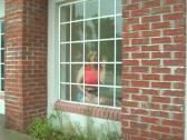 Beautiful Blonde in the Window (3) Stock Footage