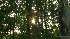 Child climbing on a trees 2  Stock Footage