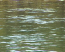 PAL: Yellowstone River close Stock Footage