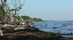Ocean Water at Fire Island National Seashore Stock Footage