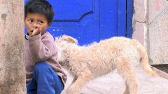 Dog plays with Peruvian boy Stock Footage
