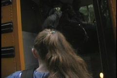 GET ON SCHOOL BUS - stock footage
